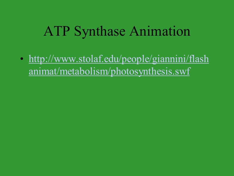 ATP Synthase Animation