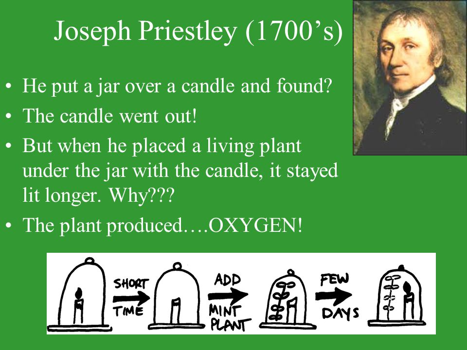 Joseph Priestley (1700's) He put a jar over a candle and found