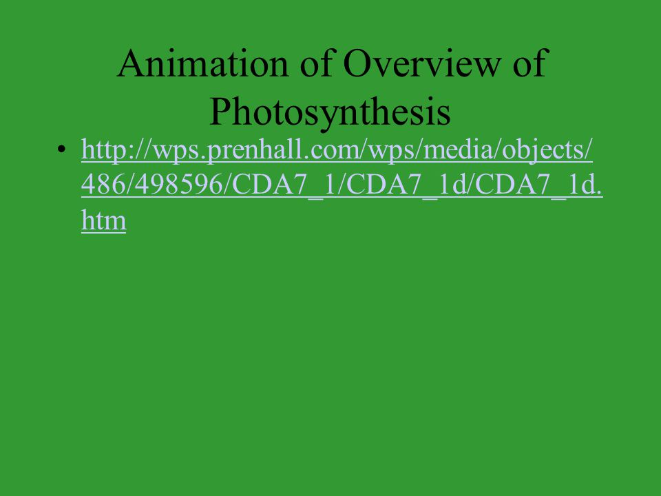 Animation of Overview of Photosynthesis