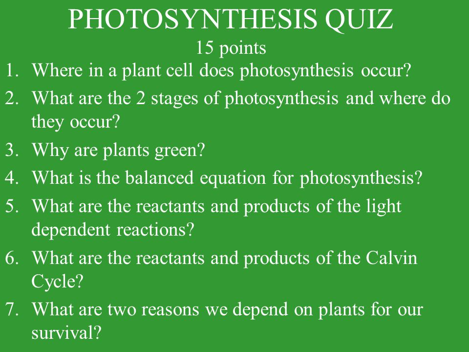 PHOTOSYNTHESIS QUIZ 15 points