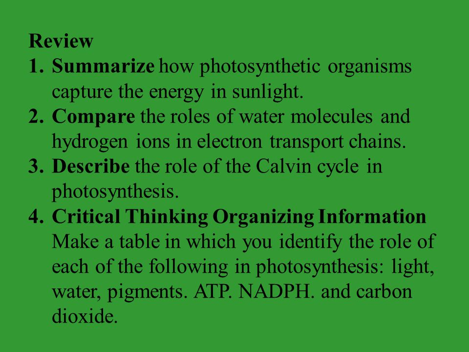 Review Summarize how photosynthetic organisms capture the energy in sunlight.