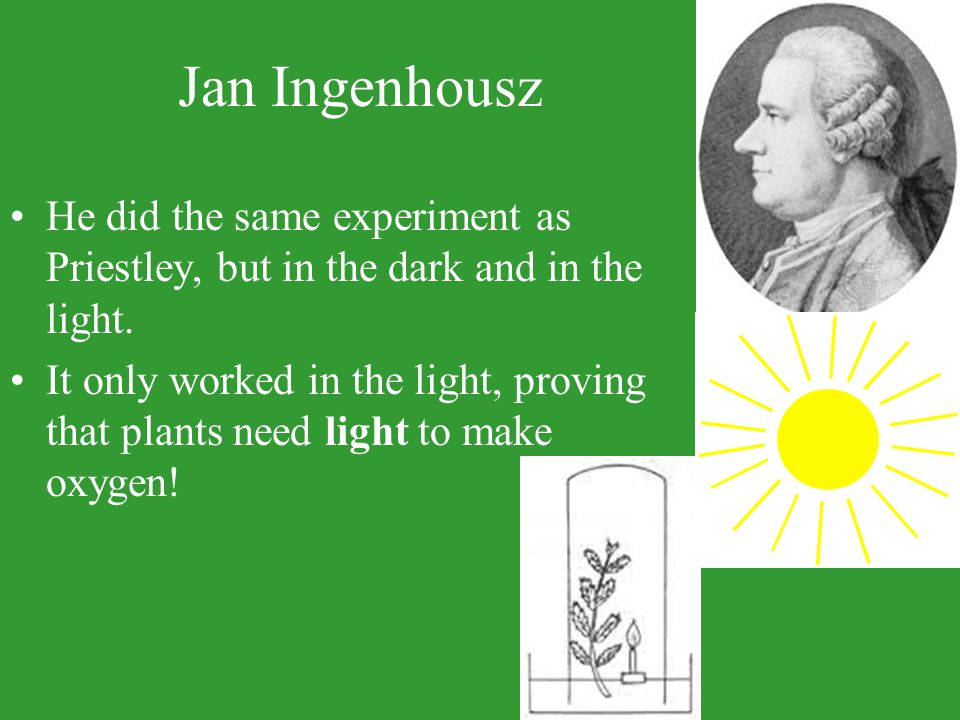 Jan Ingenhousz He did the same experiment as Priestley, but in the dark and in the light.