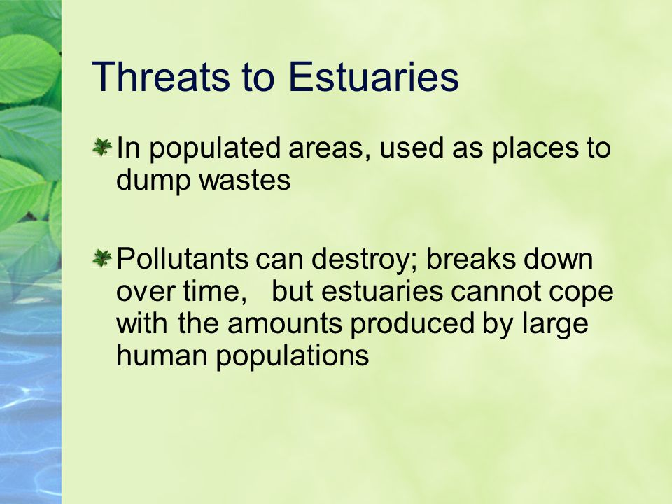 Threats to Estuaries In populated areas, used as places to dump wastes