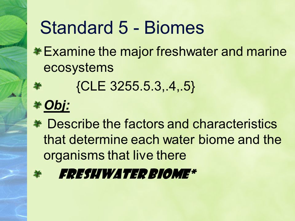 Standard 5 - Biomes Examine the major freshwater and marine ecosystems