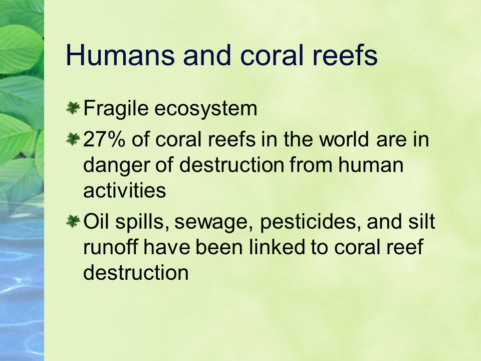 Humans and coral reefs Fragile ecosystem