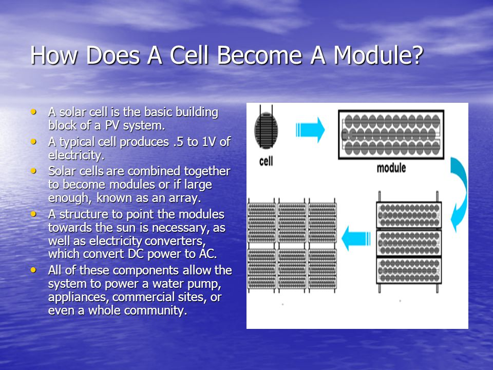 How Does A Cell Become A Module