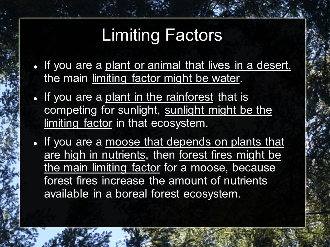 Limiting Factors If you are a plant or animal that lives in a desert, the main limiting factor might be water.