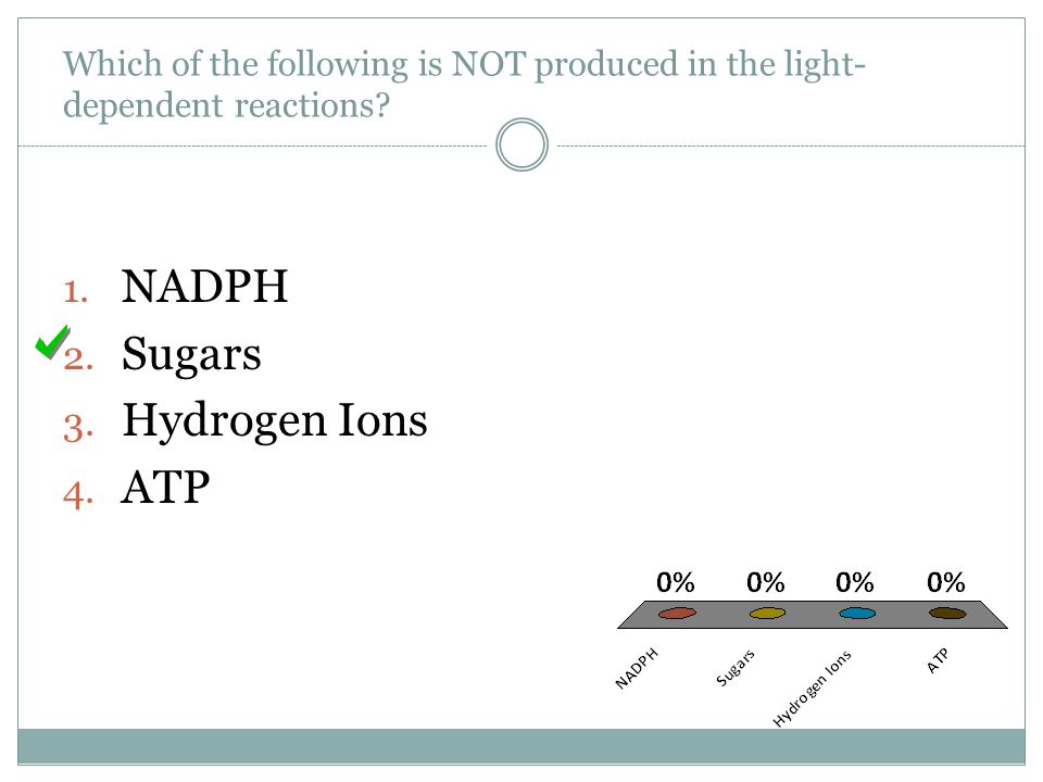 NADPH Sugars Hydrogen Ions ATP