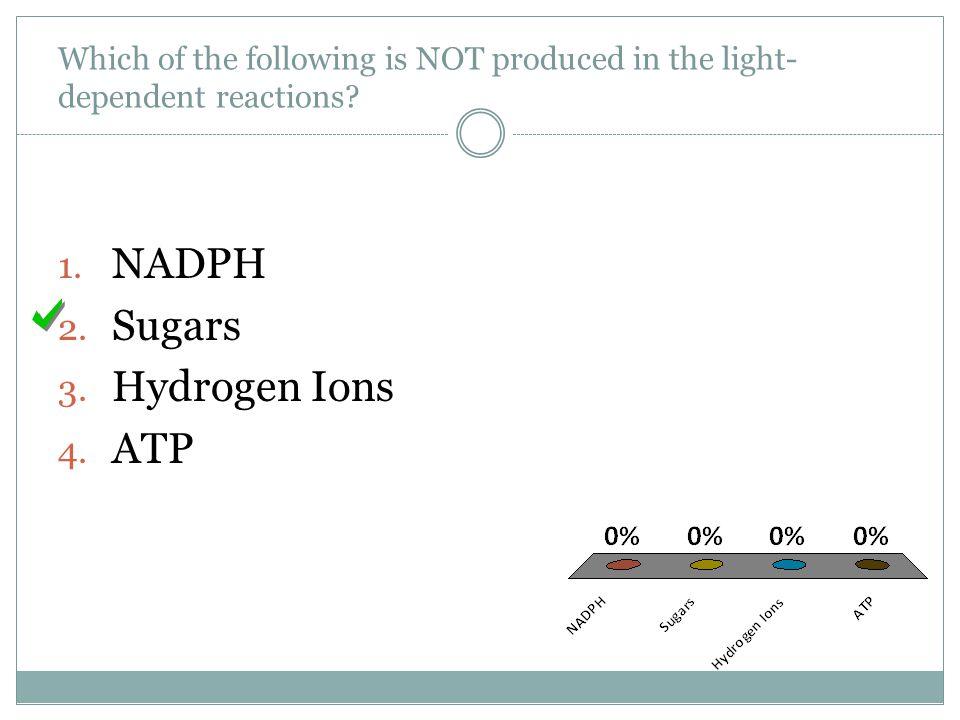 NADPH Sugars Hydrogen Ions ATP
