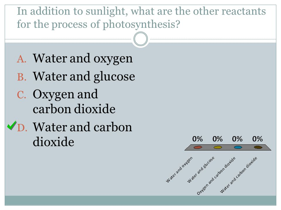 Oxygen and carbon dioxide Water and carbon dioxide