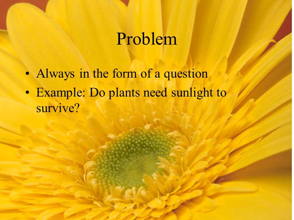 Problem Always in the form of a question