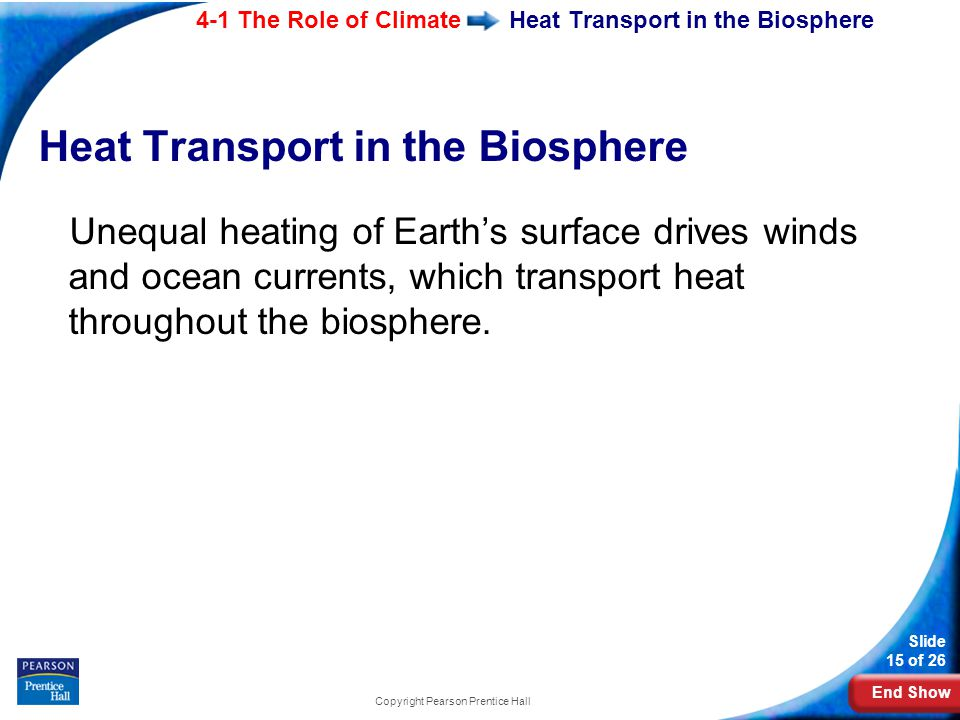 Heat Transport in the Biosphere