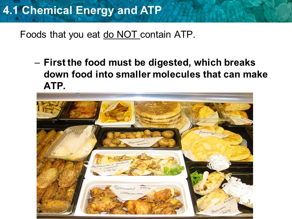 Foods that you eat do NOT contain ATP.