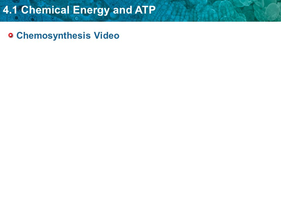 Chemosynthesis Video