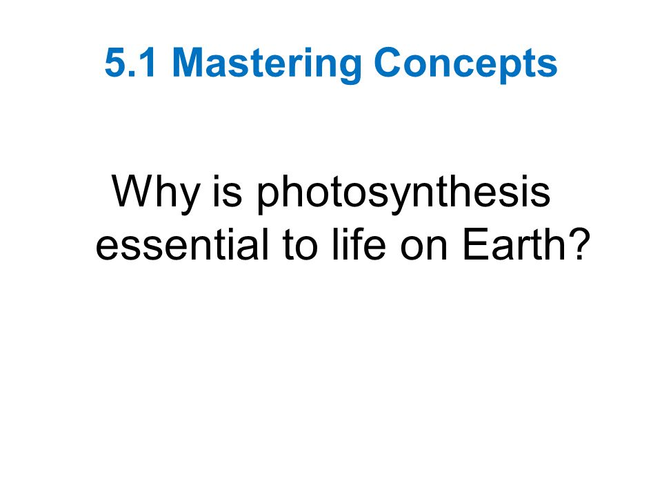 Why is photosynthesis essential to life on Earth