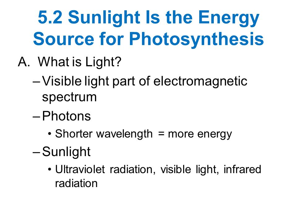 5.2 Sunlight Is the Energy Source for Photosynthesis