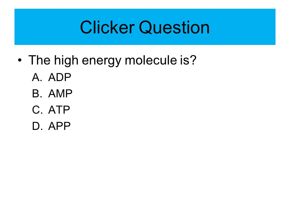 Clicker Question The high energy molecule is ADP AMP ATP APP