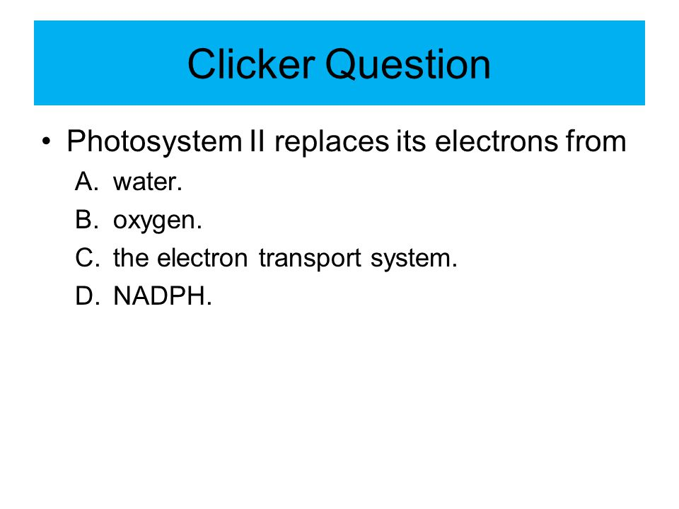 Clicker Question Photosystem II replaces its electrons from water.