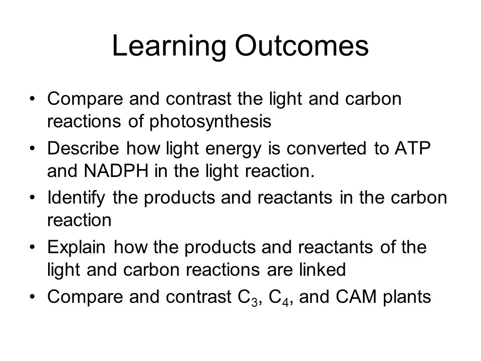 Learning Outcomes Compare and contrast the light and carbon reactions of photosynthesis.