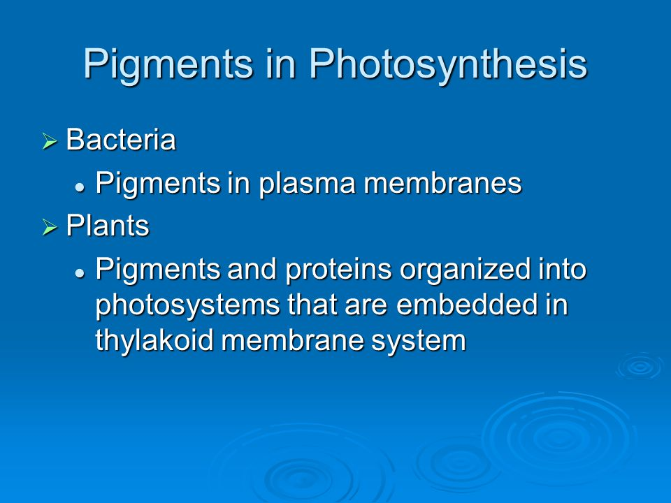 Pigments in Photosynthesis