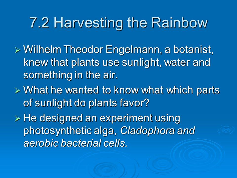 7.2 Harvesting the Rainbow