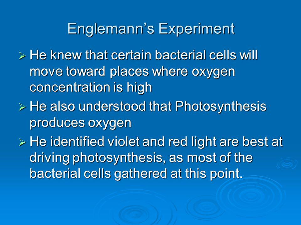Englemann's Experiment