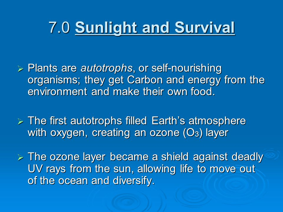 7.0 Sunlight and Survival