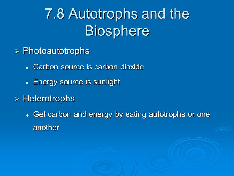 7.8 Autotrophs and the Biosphere