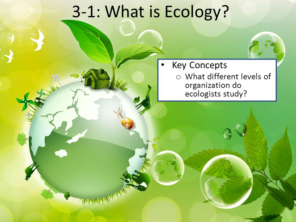 3-1: What is Ecology Key Concepts