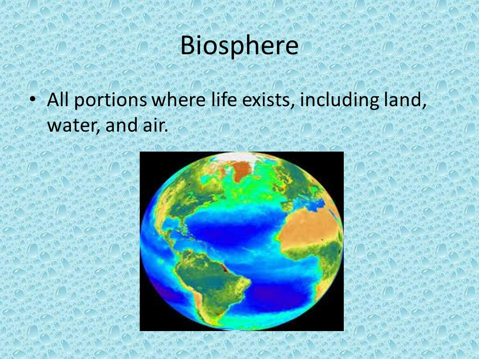 Biosphere All portions where life exists, including land, water, and air.