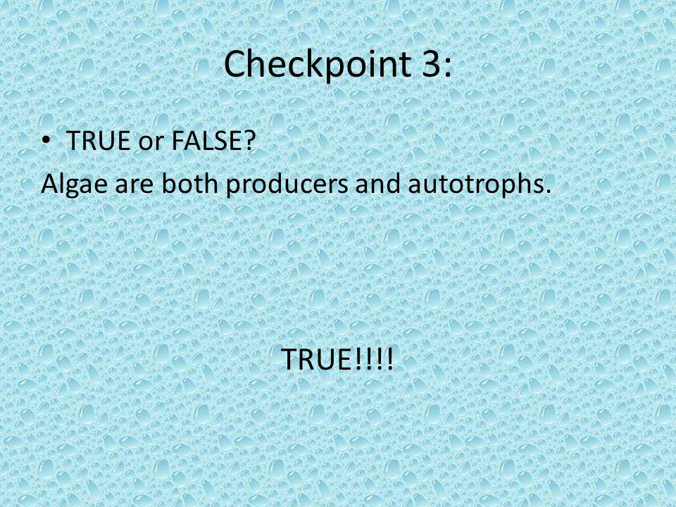 Checkpoint 3: TRUE!!!! TRUE or FALSE