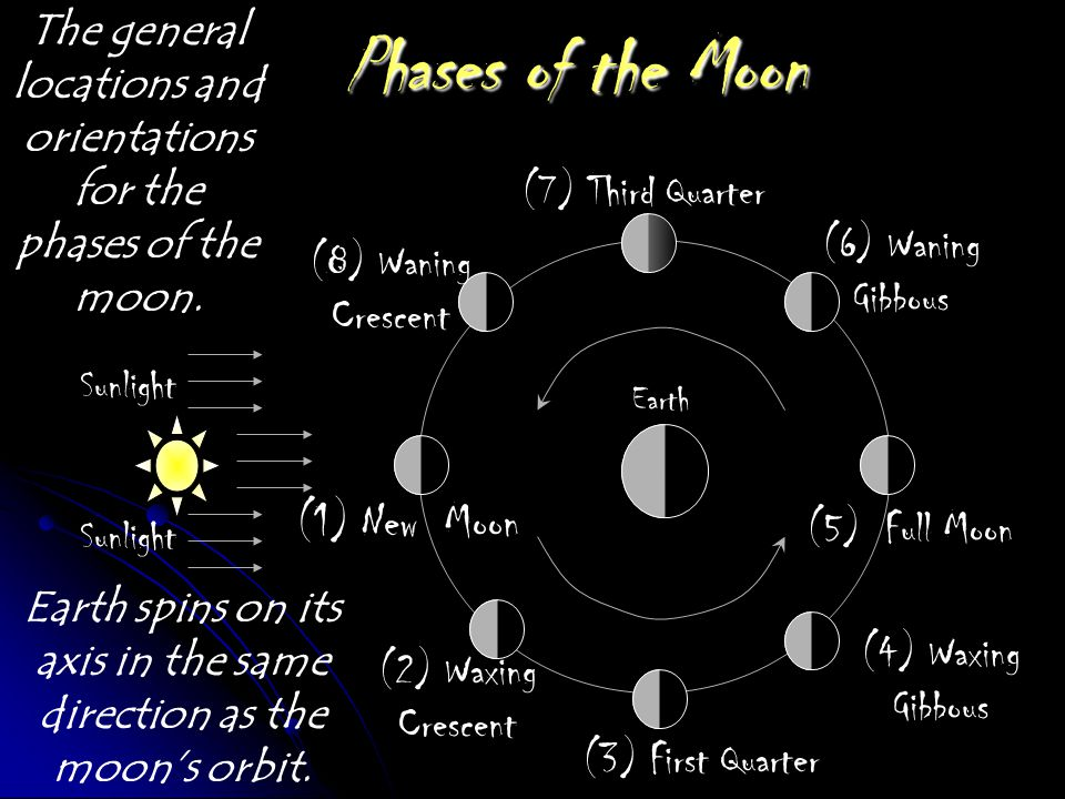 Phases of the Moon (1) New Moon