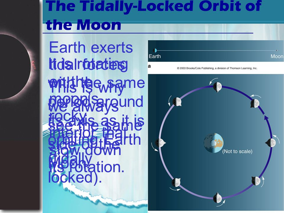 The Tidally-Locked Orbit of the Moon
