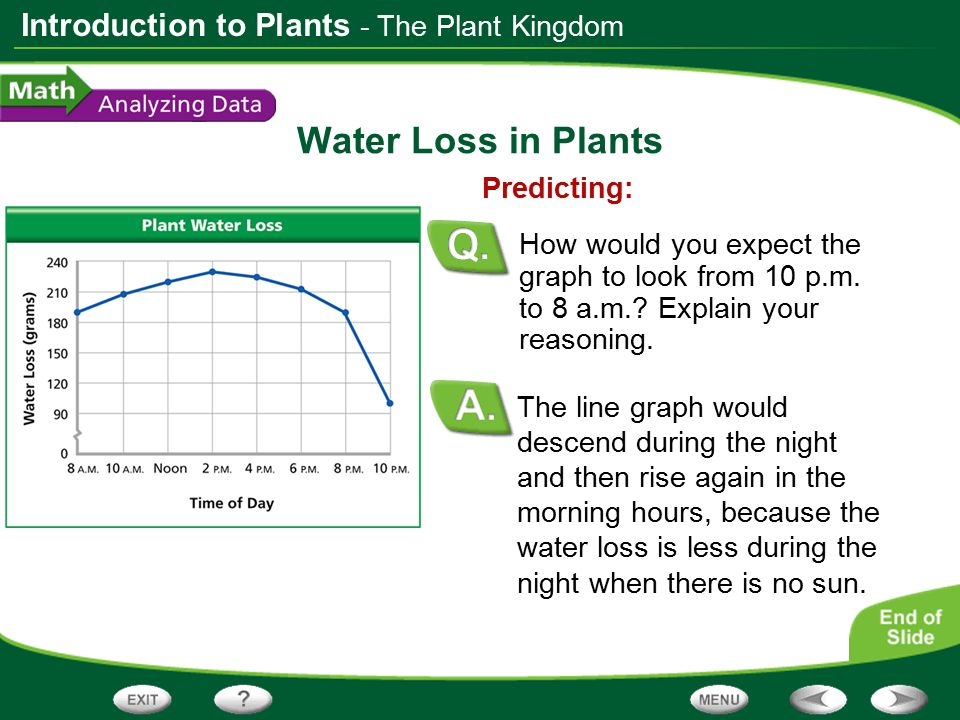 Water Loss in Plants - The Plant Kingdom Predicting: