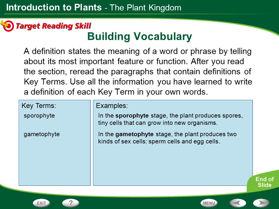 Building Vocabulary - The Plant Kingdom