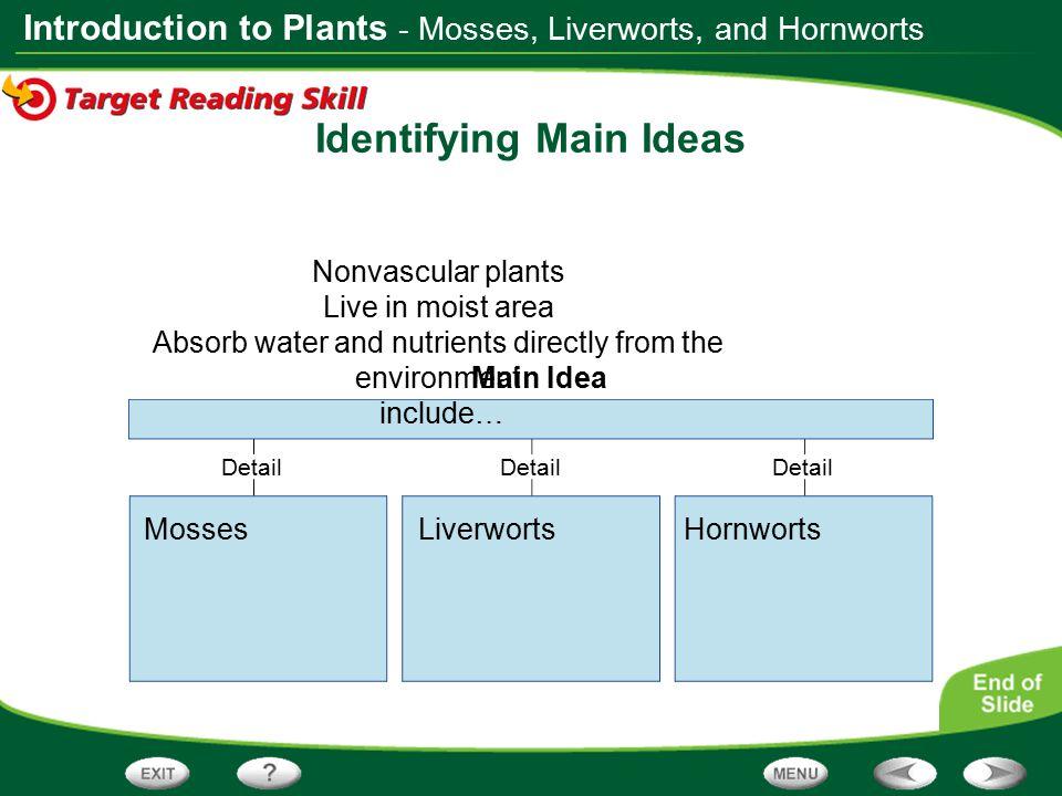 Identifying Main Ideas
