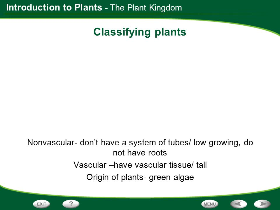 Classifying plants - The Plant Kingdom