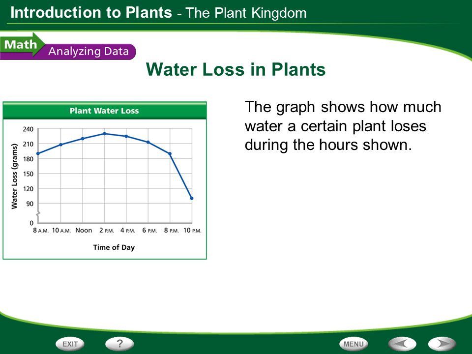 - The Plant Kingdom Water Loss in Plants.