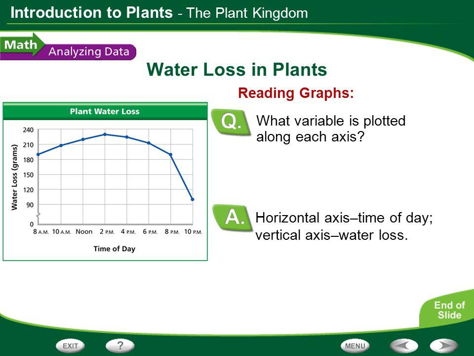 Water Loss in Plants - The Plant Kingdom Reading Graphs:
