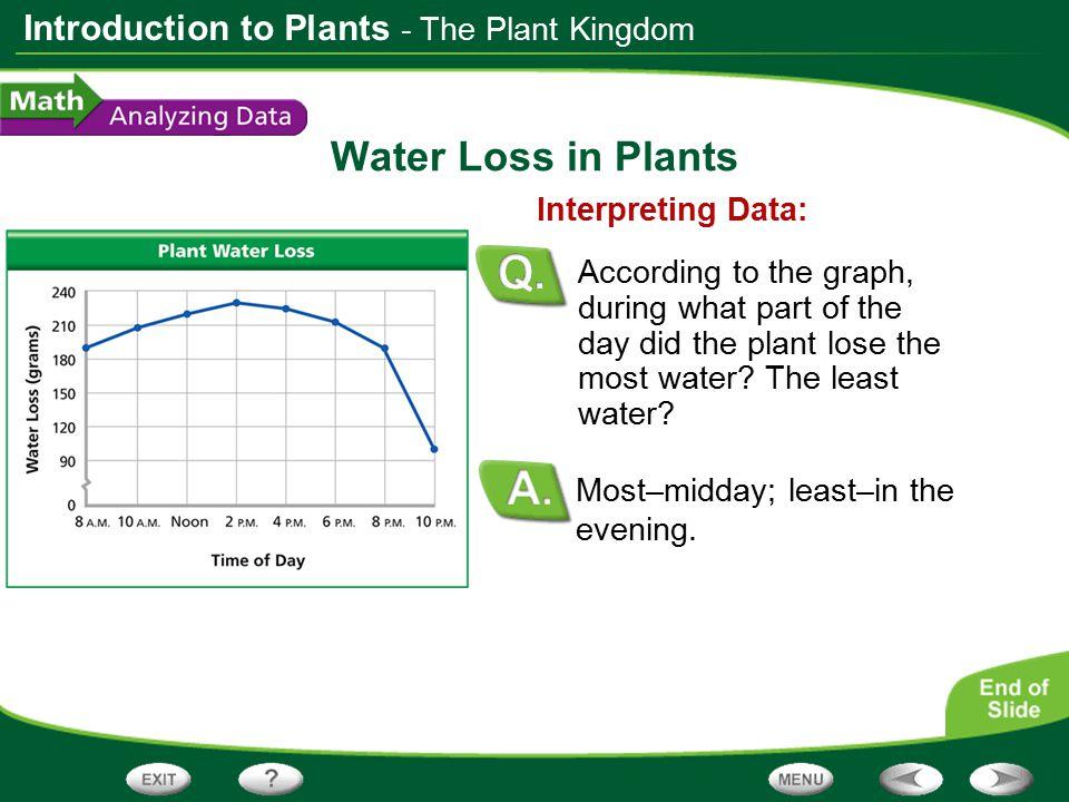 Water Loss in Plants - The Plant Kingdom Interpreting Data: