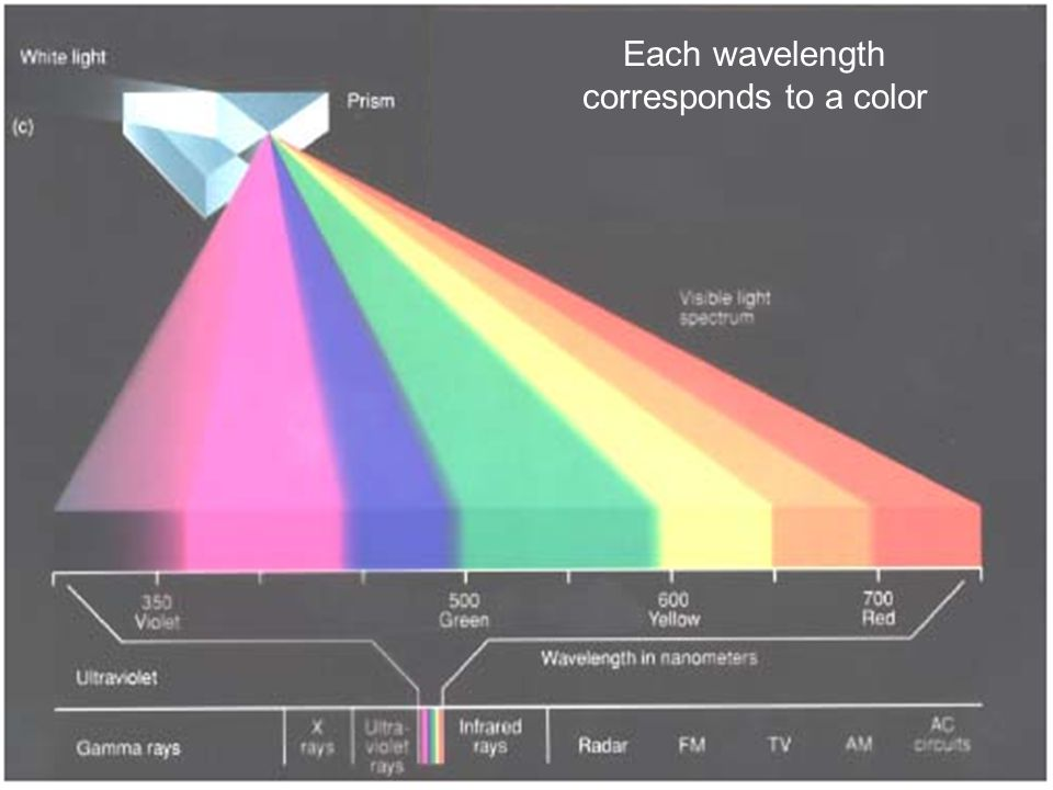 Each wavelength corresponds to a color