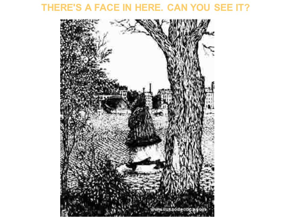 THERE S A FACE IN HERE. CAN YOU SEE IT