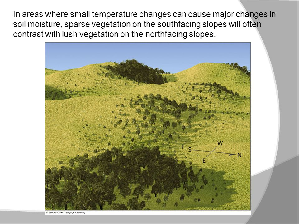 In areas where small temperature changes can cause major changes in soil moisture, sparse vegetation on the southfacing slopes will often contrast with lush vegetation on the northfacing slopes.