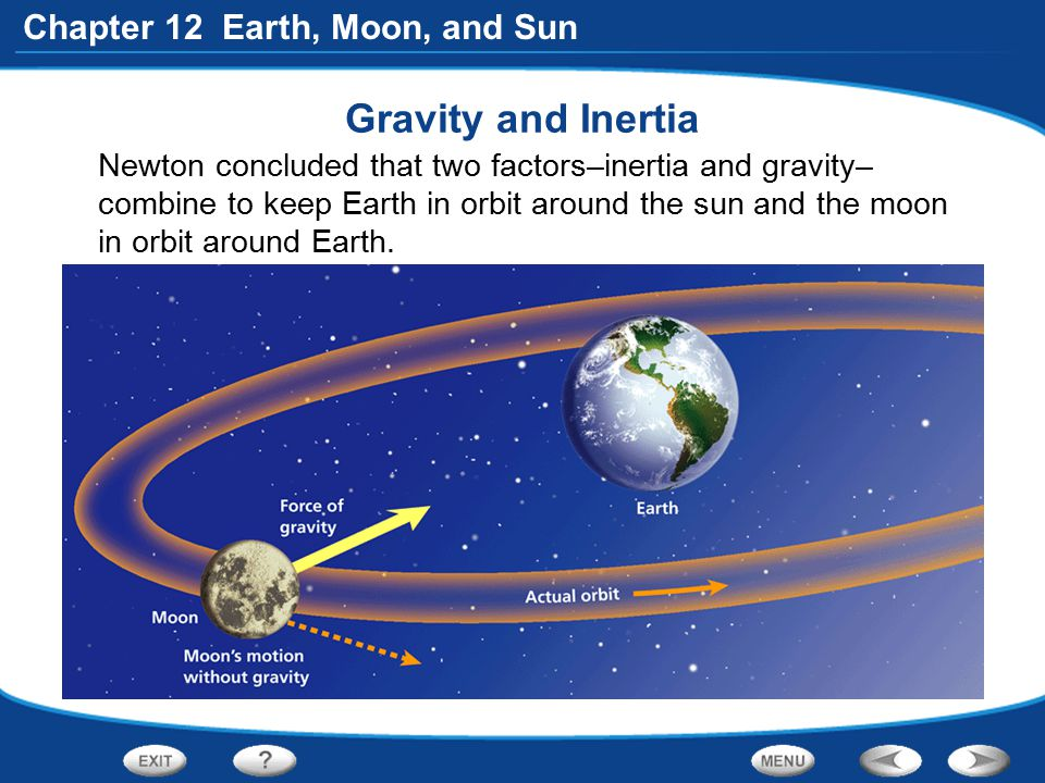 Gravity and Inertia