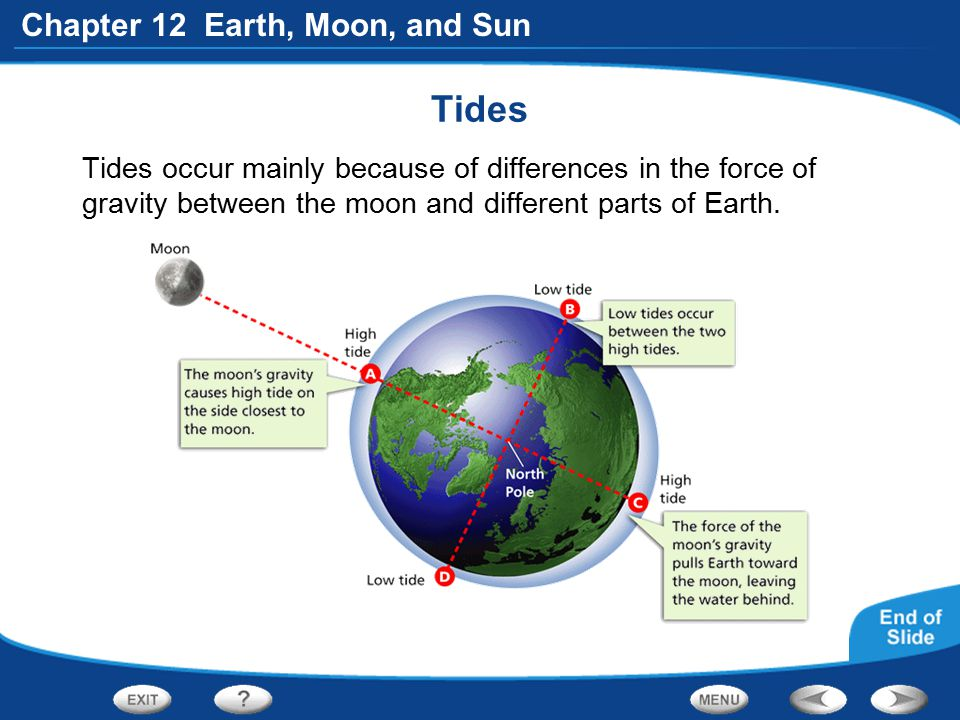 Tides Tides occur mainly because of differences in the force of gravity between the moon and different parts of Earth.