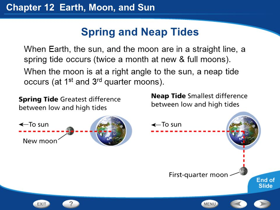 Spring and Neap Tides When Earth, the sun, and the moon are in a straight line, a spring tide occurs (twice a month at new & full moons).