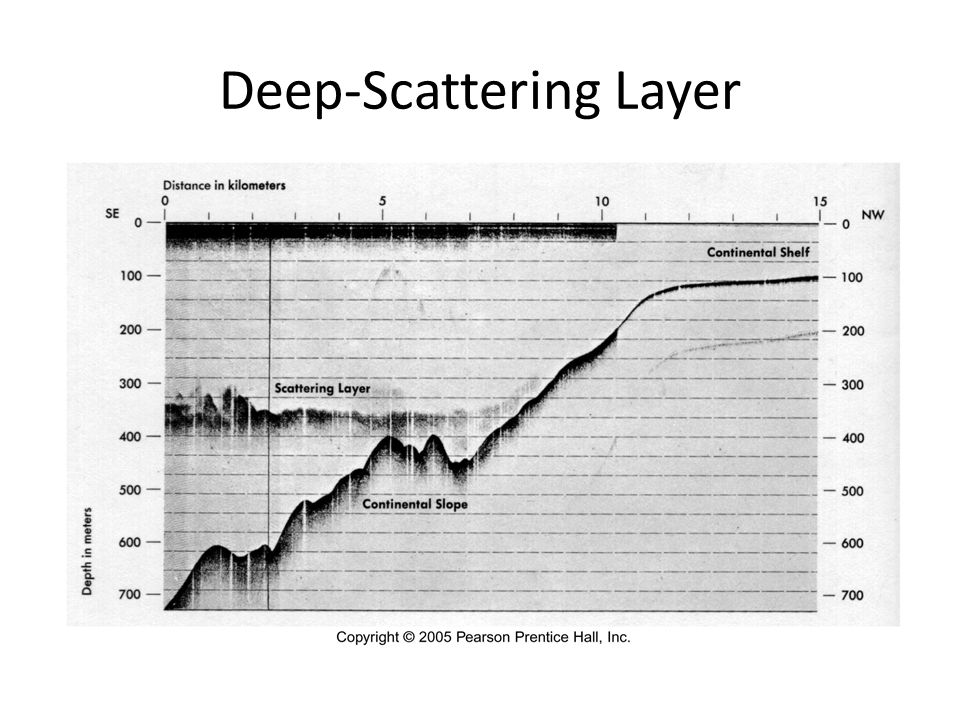 Deep-Scattering Layer