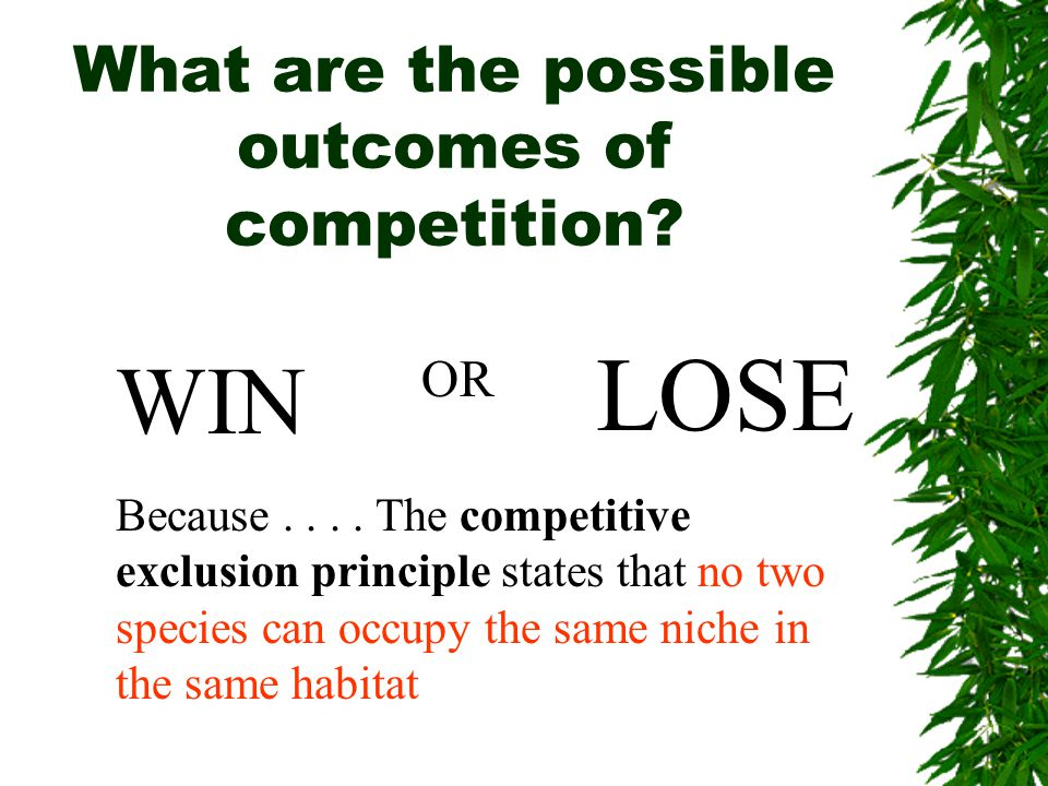 What are the possible outcomes of competition