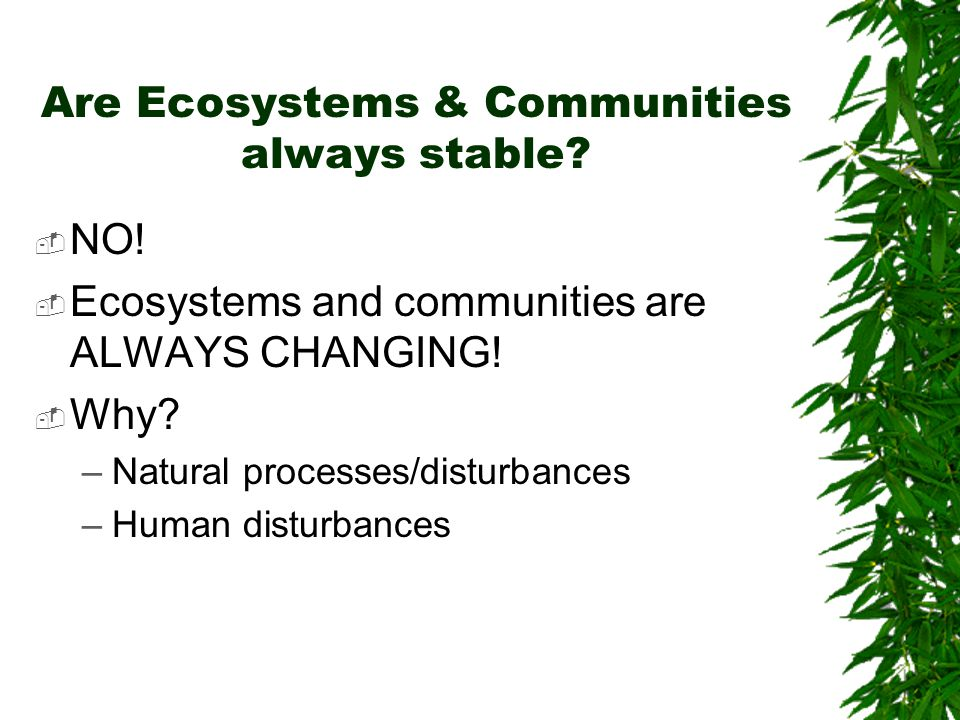 Are Ecosystems & Communities always stable