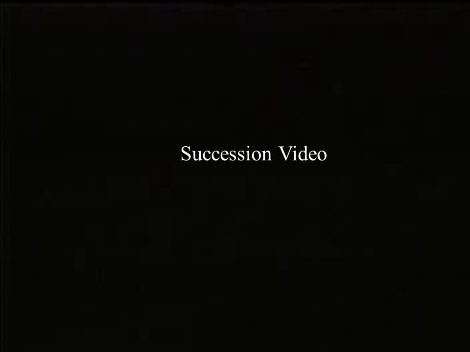 Succession Video